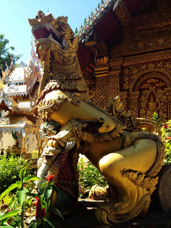 Chiang Mai_Feb 7_04