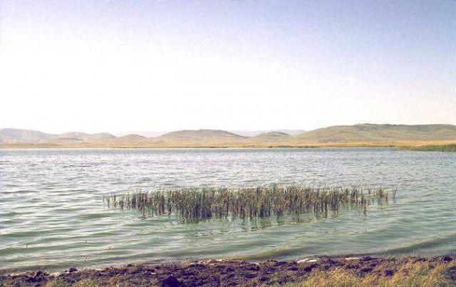 Вот оно, озеро это, на котором мы тоже учились карасей ловить.