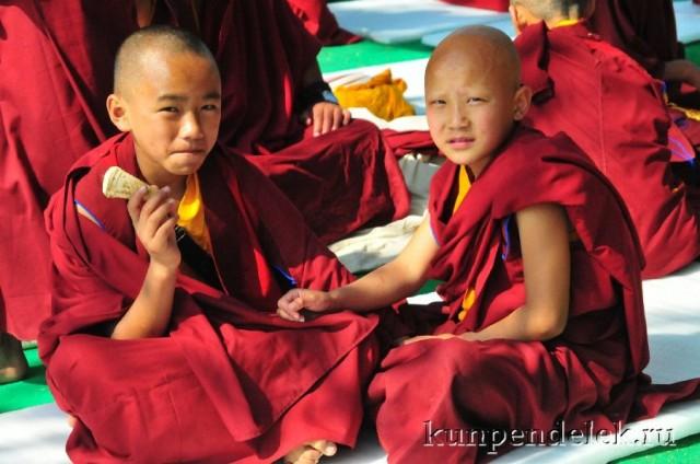 Маленькие монахи.
