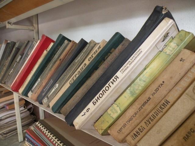 Полка в книжном магазине