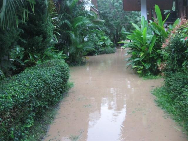 Вода у дома моего...
