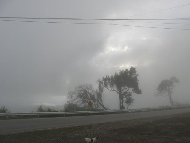 """""""Ну, вот наконец-то дождливый сентябрь..."""" А. Дольский"""