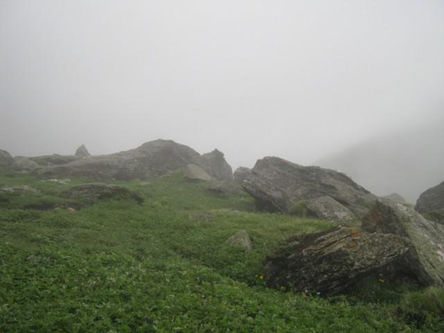 Tundra Bunj
