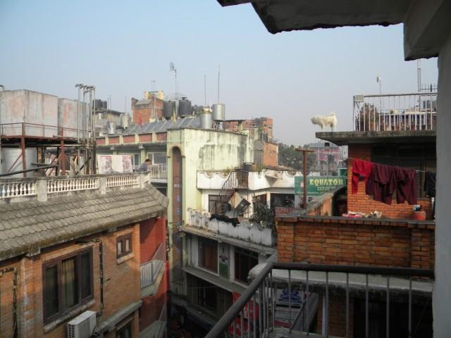 Утро в Катманду