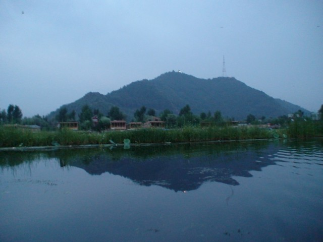 раннее утро на озере