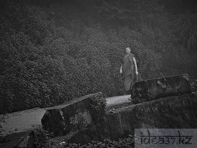 Обесцвеченная и затемненная европейская монашка