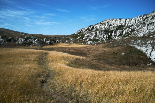 Камни и травы Чатырдага