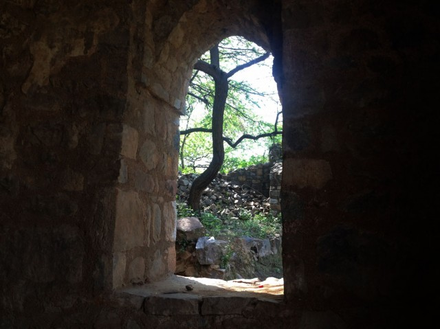 Mehrauli Archeological Park 01
