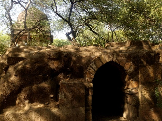 Mehrauli Archeological Park 10