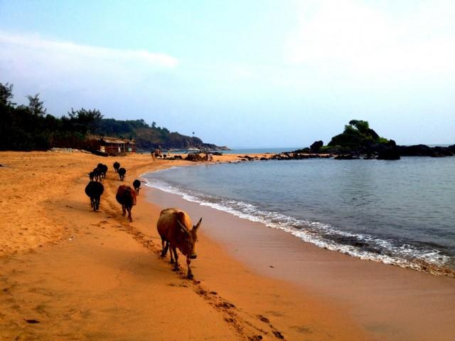 Om beach 03