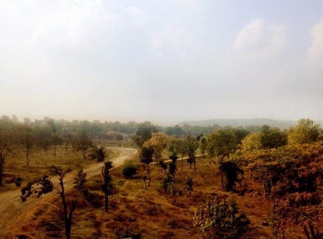 Центральная Индия