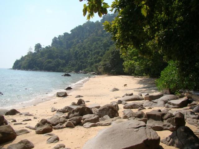 дикий пляж совсем рядом