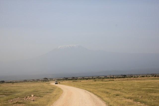 Амбосели. Килиманджаро вид с парка
