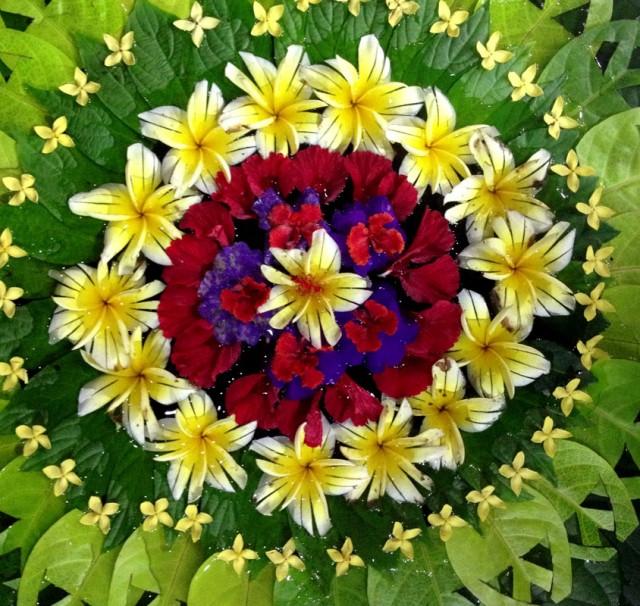 Орнамент из цветов на воде