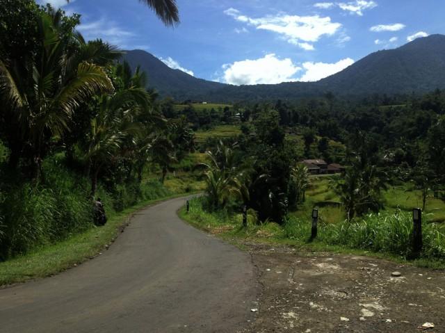 Trip to Jatiluwih Rice Fields 02