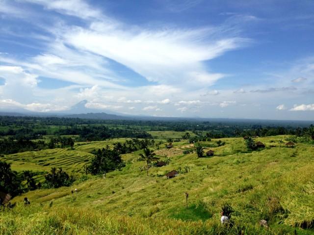 Trip to Jatiluwih Rice Fields 07