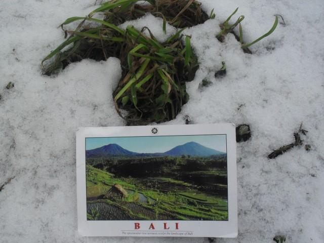 Рисовые поля и вулканы на снегу