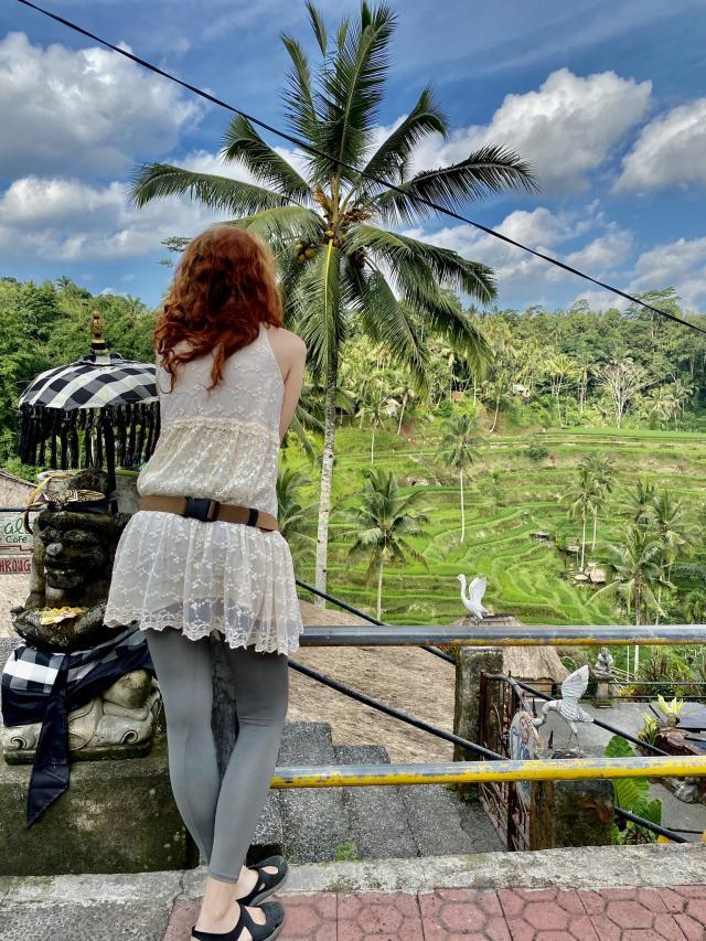 Смотрю на рисовые поля без туристов