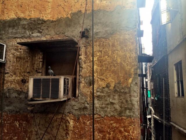 Вид из окна геста Аджай