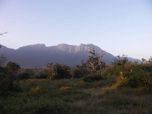 Рассвет у подножия Нилигири
