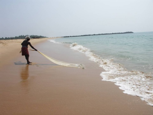 малабарский рыбак...