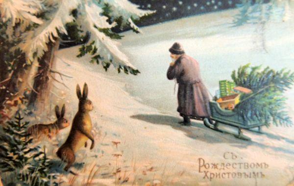 Вот снега немного и зайцев тебе)