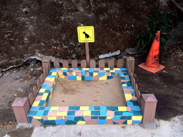 Гонконг 34. Уличный туалет для собак.