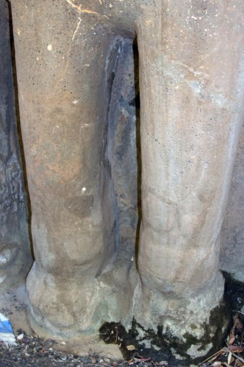 Ноги слонов