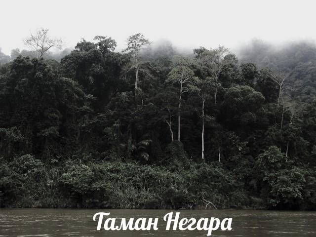 Таман Негара
