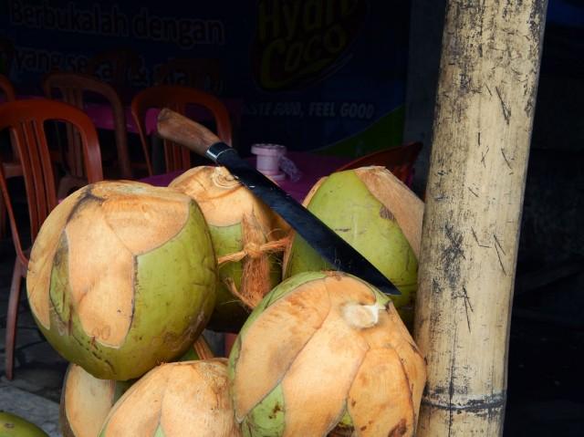 Просто кокосы