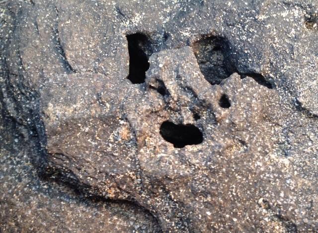 Лицо в камне