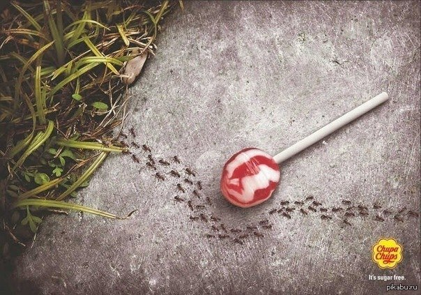 муравьи и чупа-чупс