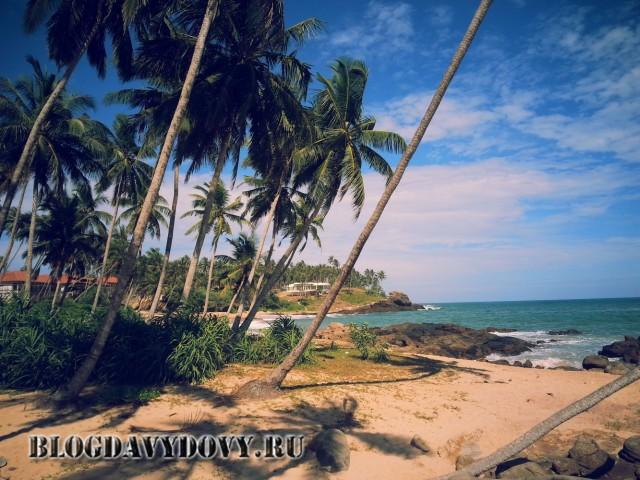 Пляж Peace Haven, Тангалле ( Tangalle)