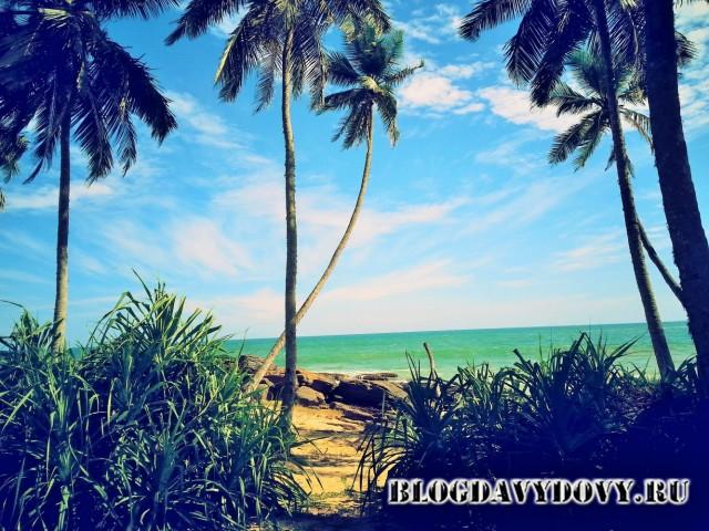 Пляж Гоямбокка, Тангалле (Goyambokka Beach, Tangolle)
