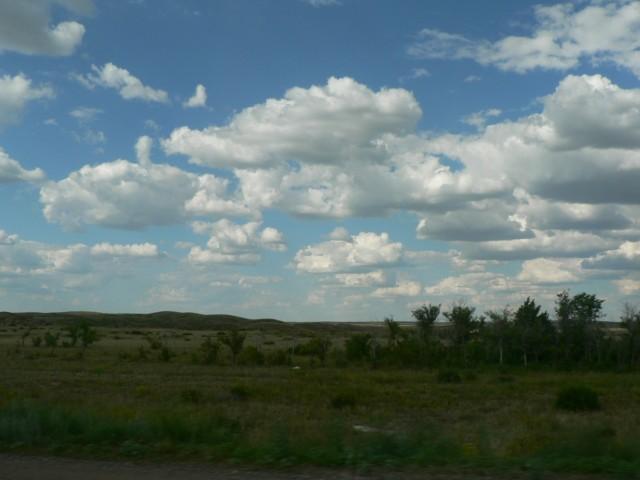 Небо тоже поменялось. Наше южное небо высокое, светлое до белизны. А это уже голубое с низко проплывающими кучевыми облаками.