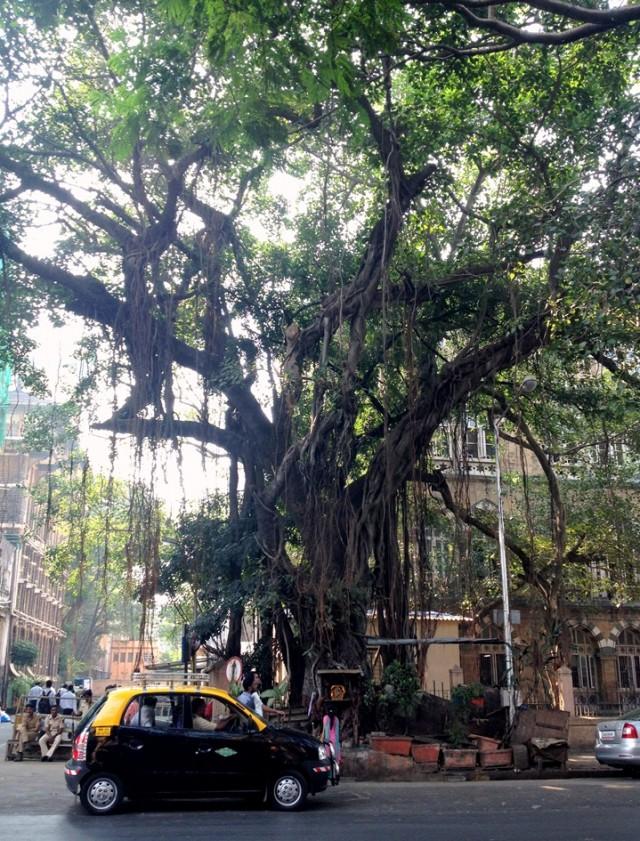 Мумбай 1