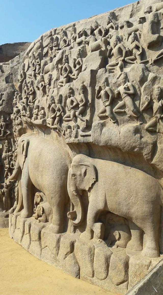 Слоны тоже почти как живые