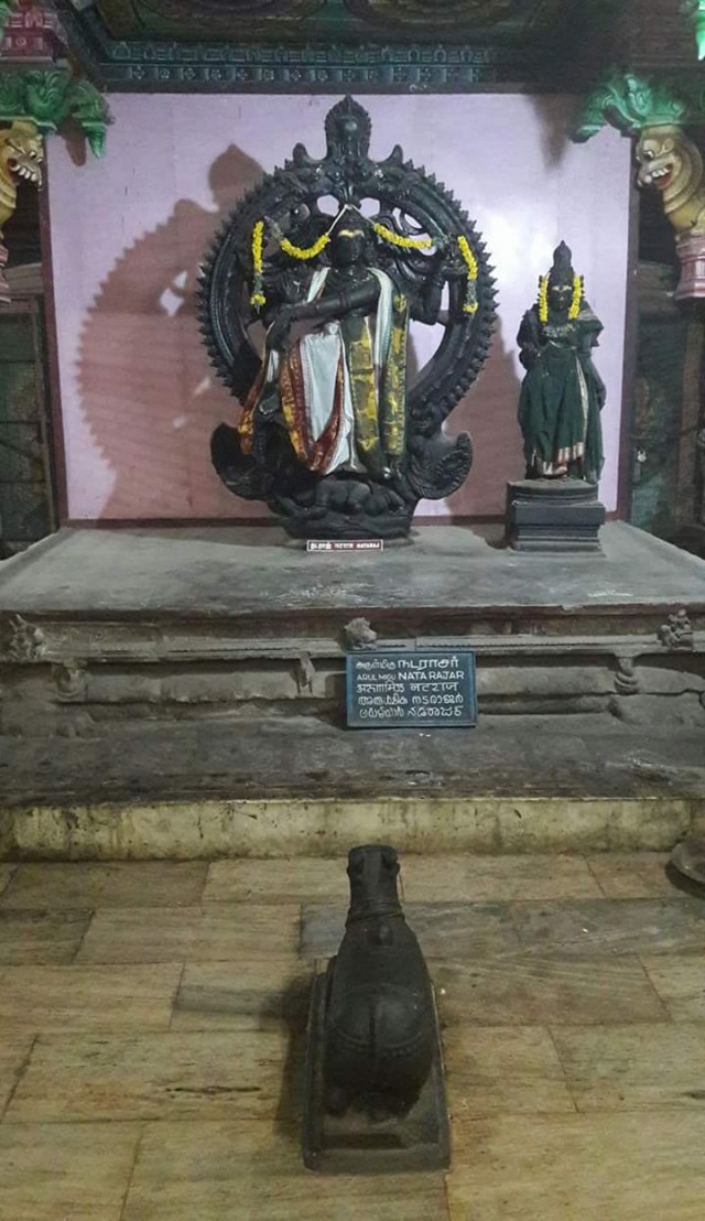 Шива-Натараджа в храмовом музее