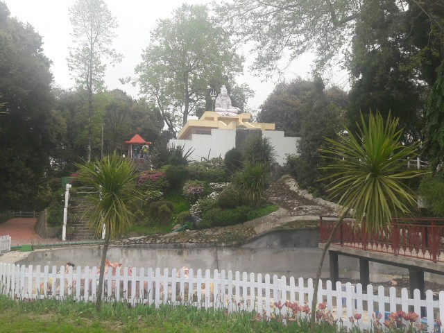 Shrubbery Nightingale Park