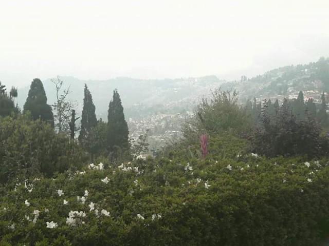 Вид на Дарджилинг