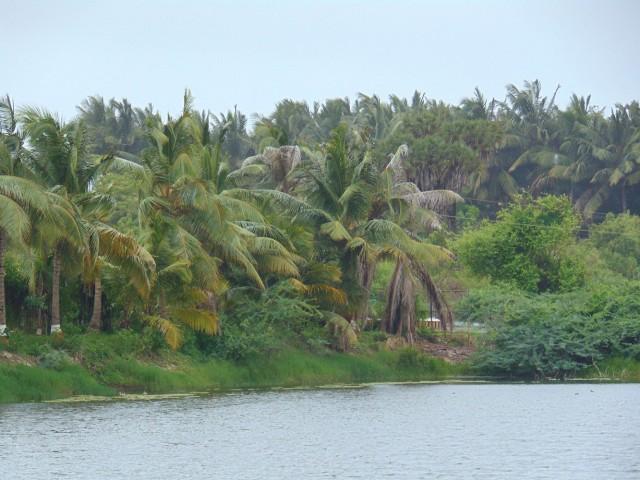 Озеро в центре острова