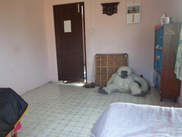 Гостевя комната моя в приюте)