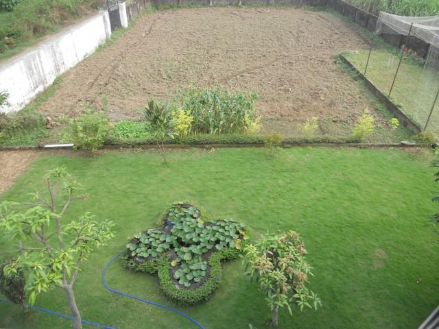 Лужайка и огород