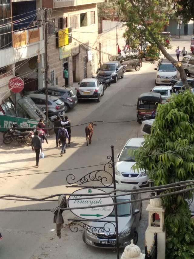 Вид на улицу Кабира