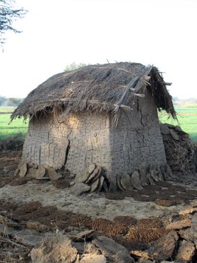 Дом из кизяков во Вриндаване