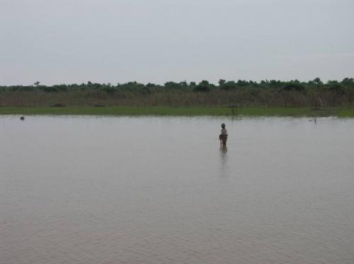 вода, человек и рисовые плантации