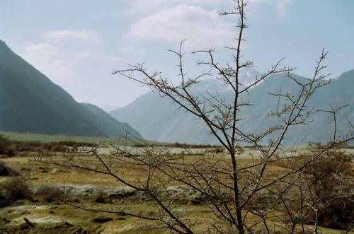 В долине Нубра
