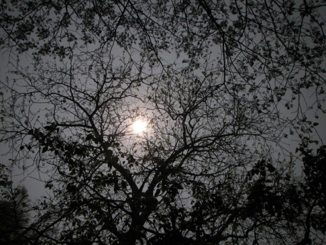 Зимняя луна 1