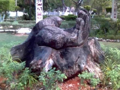 Это из дерево сделано...