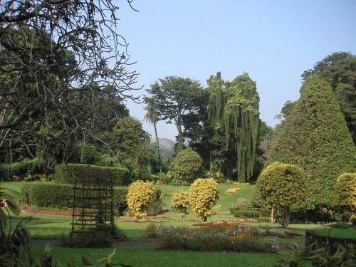 Перадения. Ботанический сад.